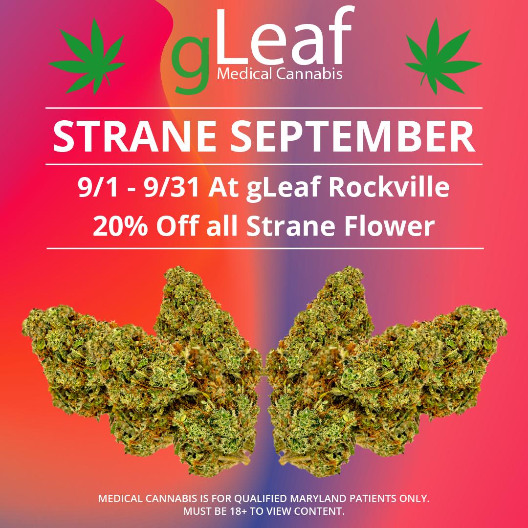 strane september gleaf rockville 20% off all strane flower